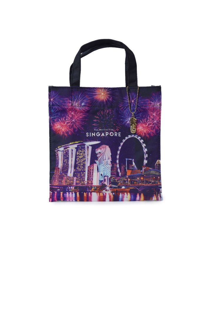 SINGAPORE FIREWORKS LUNCH BAG